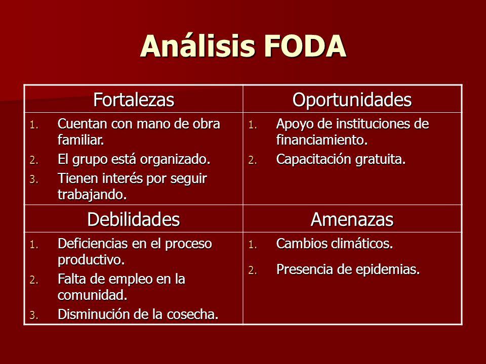Análisis FODA FortalezasOportunidades 1.Cuentan con mano de obra familiar.