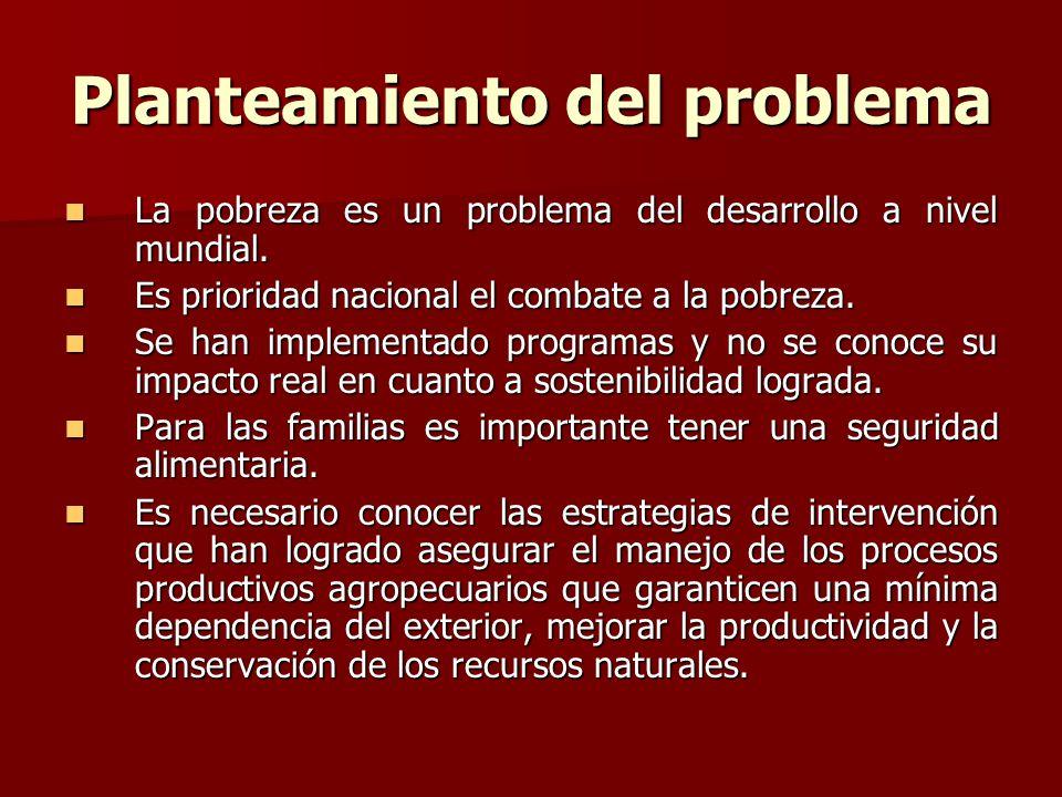 Planteamiento del problema La pobreza es un problema del desarrollo a nivel mundial. Es prioridad nacional el combate a la pobreza. Se han implementad