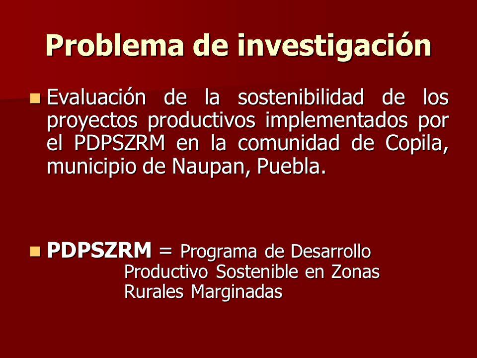 Problema de investigación Evaluación de la sostenibilidad de los proyectos productivos implementados por el PDPSZRM en la comunidad de Copila, municipio de Naupan, Puebla.