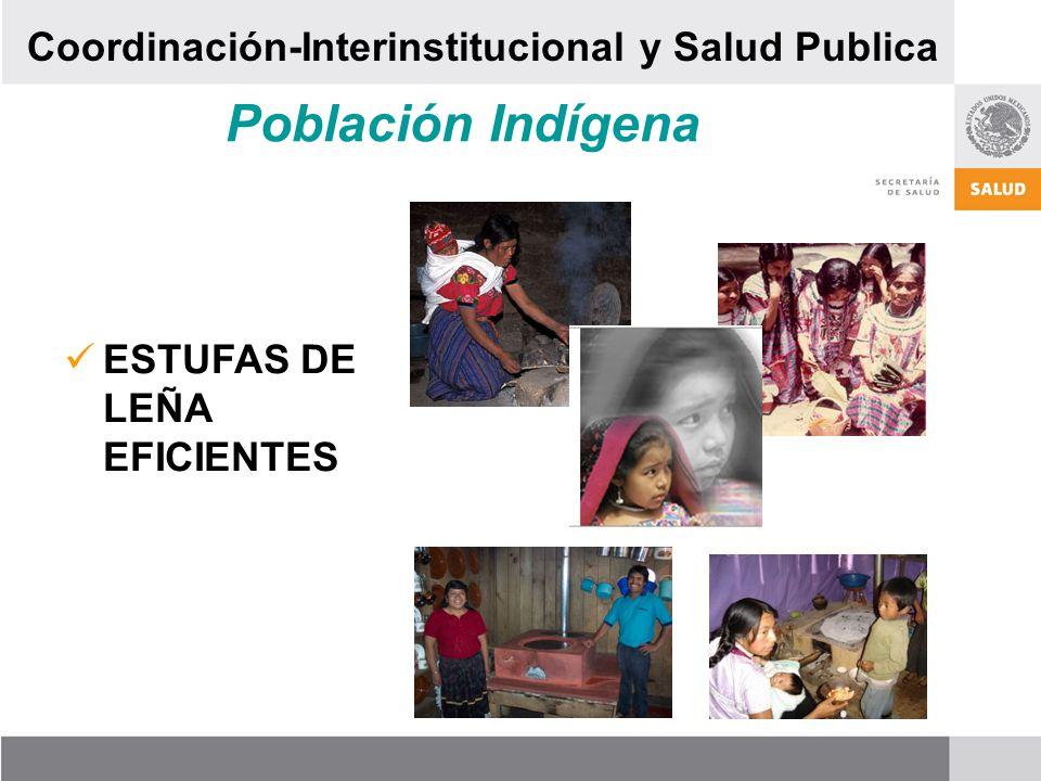 Población Indígena ESTUFAS DE LEÑA EFICIENTES Coordinación-Interinstitucional y Salud Publica