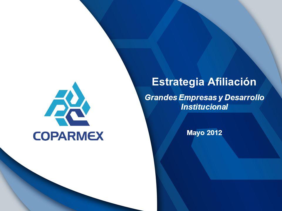 Estrategia Afiliación Grandes Empresas y Desarrollo Institucional Mayo 2012