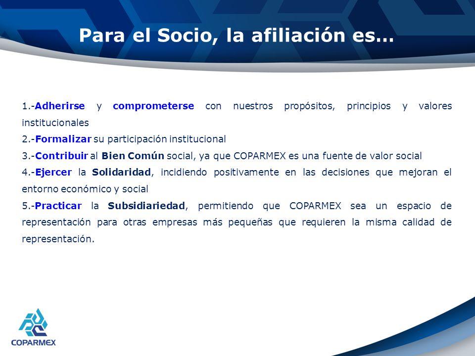 Estrategia de Desarrollo Institucional Líneas de estrategia 2010 -2012 1.-Retener al Socio.