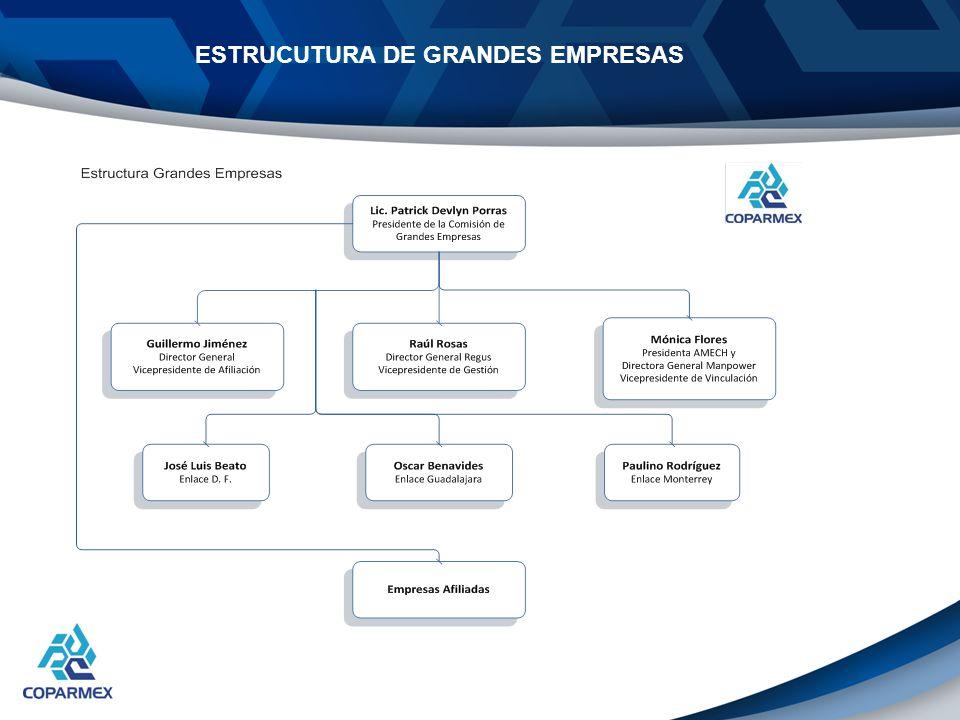 Con esta nueva estructura de Voluntarios, estamos proponiendo complementar la Estrategia de afiliación de Grandes Empresas con Centros Empresariales, buscando beneficios para los Centros.