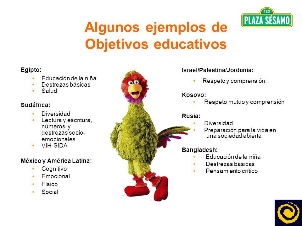 4 Algunos ejemplos de Objetivos educativos Egipto: Educación de la niña Destrezas básicas Salud Sudáfrica: Diversidad Lectura y escritura, números, y