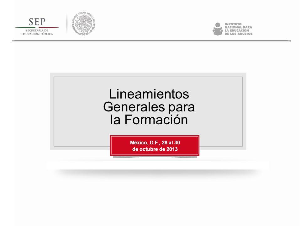 Lineamientos Generales para la Formación México, D.F., 28 al 30 de octubre de 2013