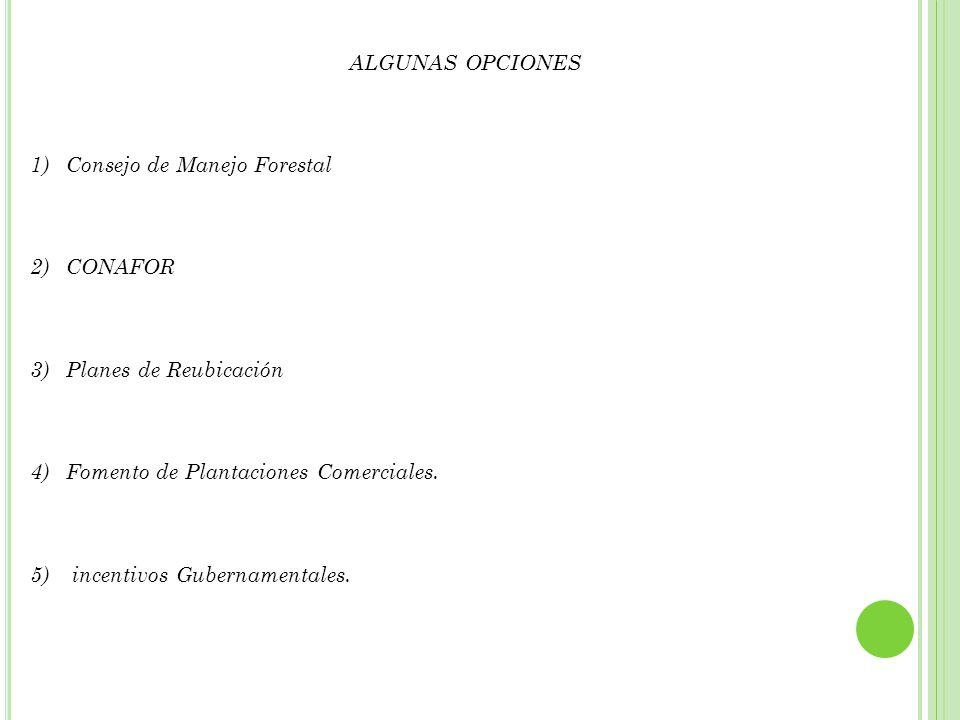 III.PROYECTOS LEGISLATIVOS O REGULATORIOS
