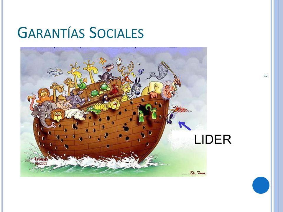 G ARANTÍAS S OCIALES LIDER 3