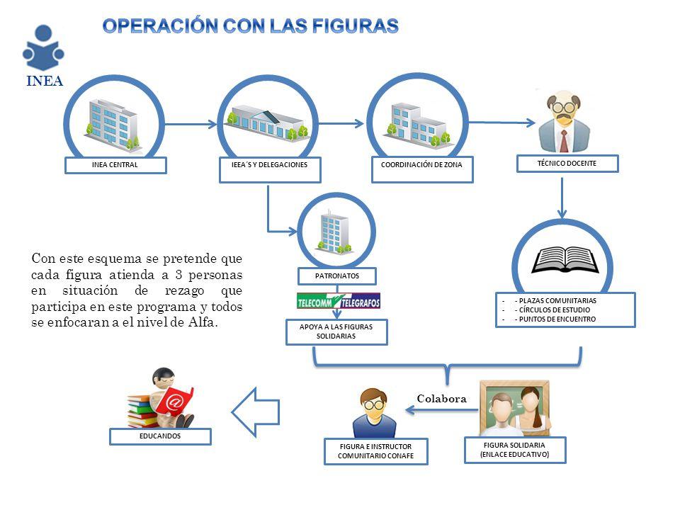 PATRONATOS INEA CENTRALIEEA´S Y DELEGACIONES COORDINACIÓN DE ZONA -- PLAZAS COMUNITARIAS -- CÍRCULOS DE ESTUDIO -- PUNTOS DE ENCUENTRO FIGURA SOLIDARI