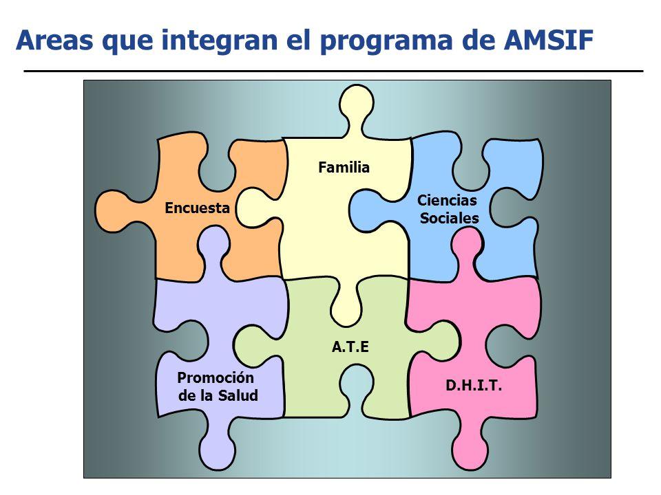 Areas que integran el programa de AMSIF Encuesta A.T.E D.H.I.T.