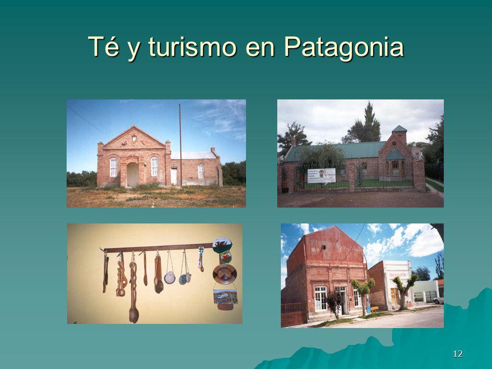 12 Té y turismo en Patagonia