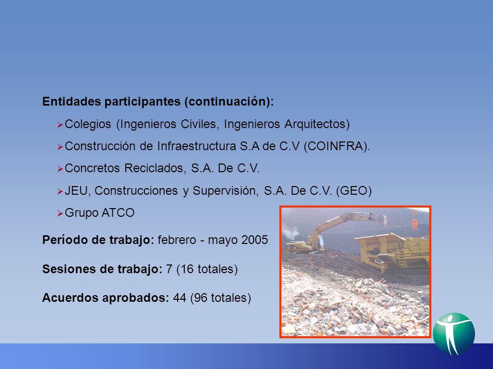 Período de trabajo: febrero - mayo 2005 Sesiones de trabajo: 7 (16 totales) Acuerdos aprobados: 44 (96 totales) Entidades participantes (continuación)