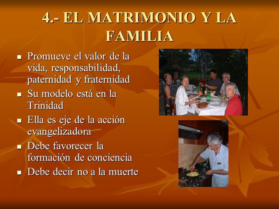 4.- EL MATRIMONIO Y LA FAMILIA Promueve el valor de la vida, responsabilidad, paternidad y fraternidad Promueve el valor de la vida, responsabilidad,