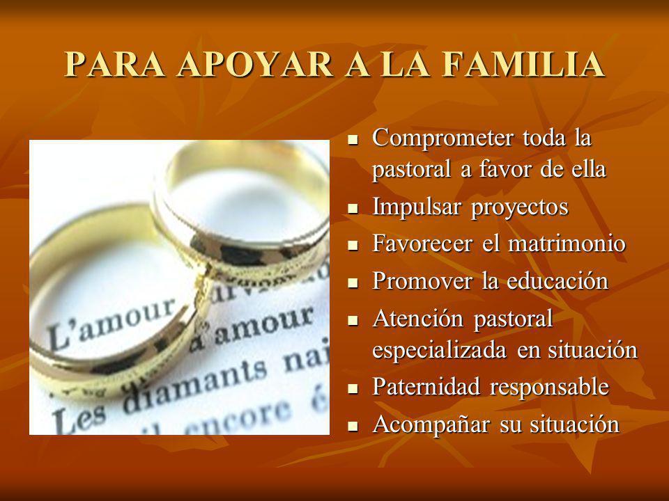 PARA APOYAR A LA FAMILIA Comprometer toda la pastoral a favor de ella Comprometer toda la pastoral a favor de ella Impulsar proyectos Impulsar proyect