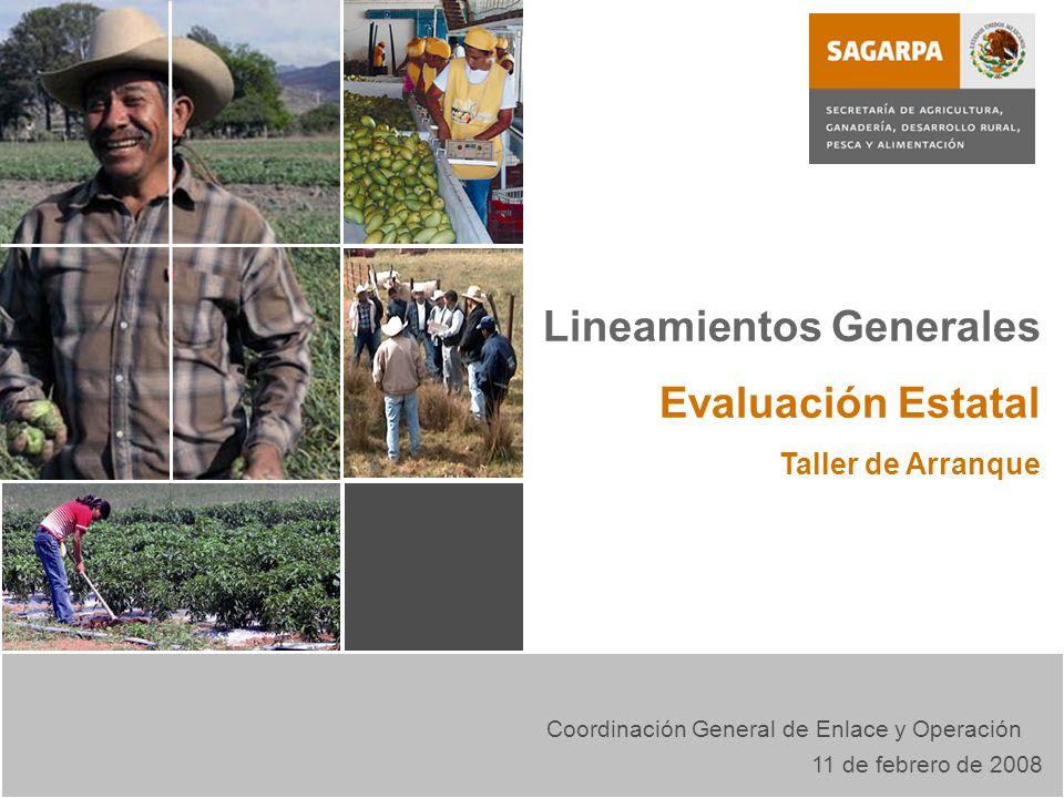 Evaluación Externa Lineamientos Generales Evaluación Estatal Taller de Arranque Coordinación General de Enlace y Operación 11 de febrero de 2008