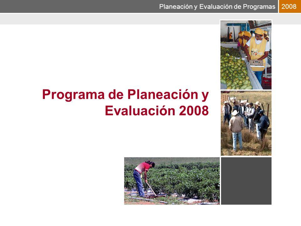 Planeación y Evaluación de Programas2008 Programa de Planeación y Evaluación 2008