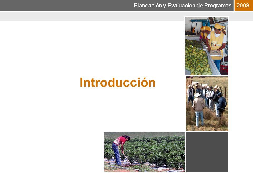 Planeación y Evaluación de Programas2008 Introducción