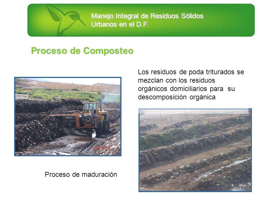 Manejo Integral de Residuos Sólidos Urbanos en el D.F. Proceso de maduración Los residuos de poda triturados se mezclan con los residuos orgánicos dom