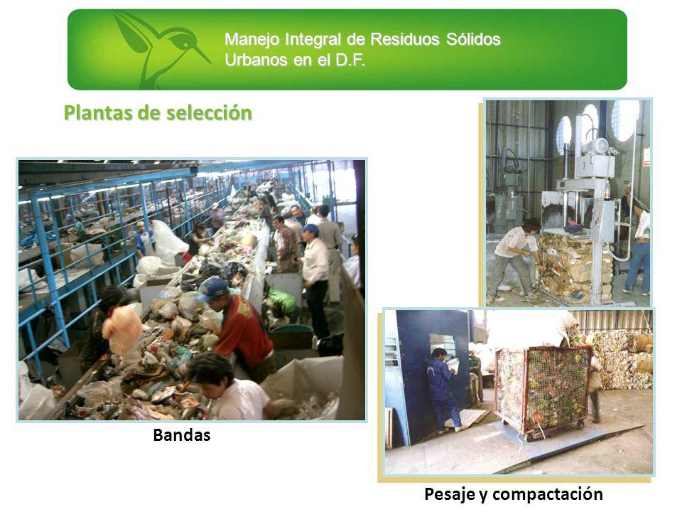 Manejo Integral de Residuos Sólidos Urbanos en el D.F. Plantas de selección Pesaje y compactación Bandas