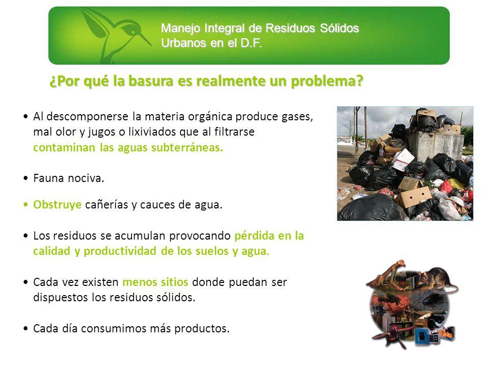 Manejo Integral de Residuos Sólidos Urbanos en el D.F. ¿Por qué la basura es realmente un problema? Al descomponerse la materia orgánica produce gases