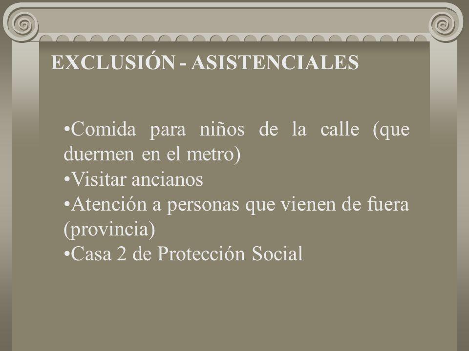 EXCLUSIÓN - ASISTENCIALES Comida para niños de la calle (que duermen en el metro) Visitar ancianos Atención a personas que vienen de fuera (provincia) Casa 2 de Protección Social