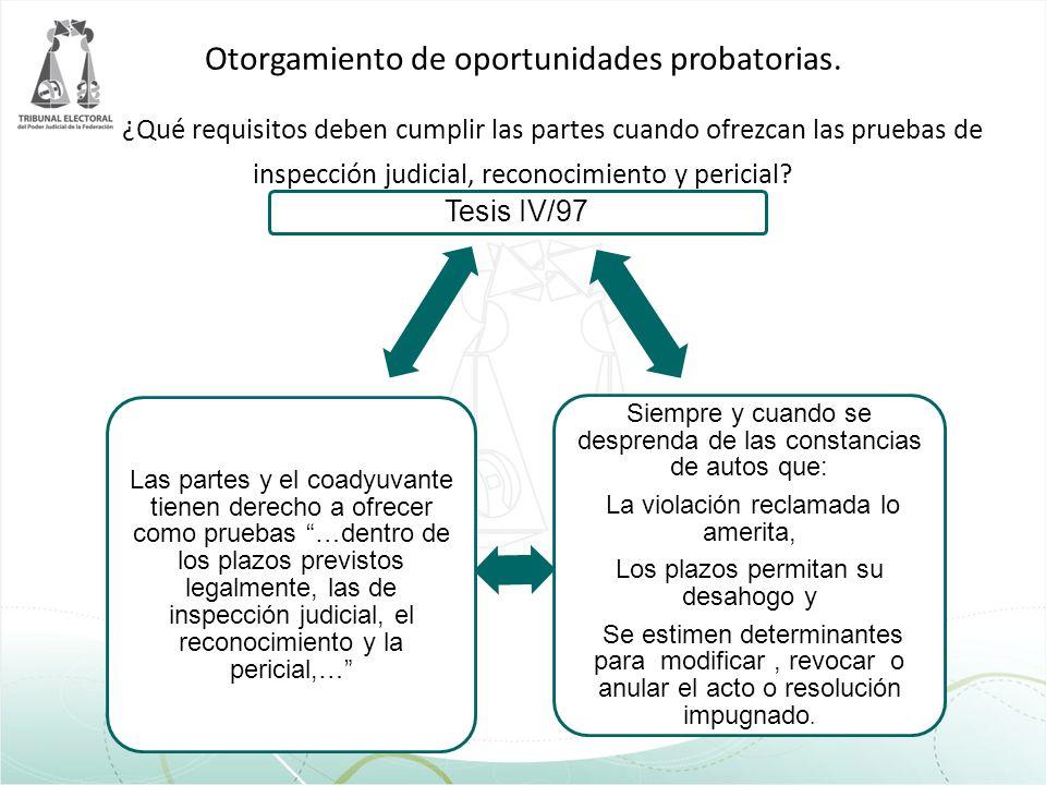 Otorgamiento de oportunidades probatorias. ¿Qué requisitos deben cumplir las partes cuando ofrezcan las pruebas de inspección judicial, reconocimiento