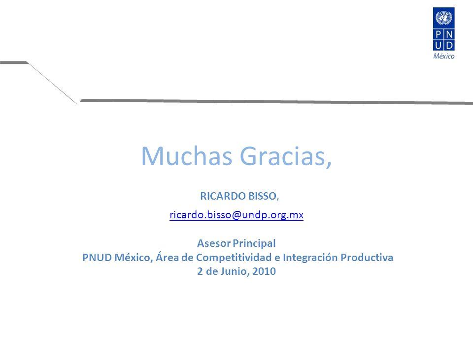 Muchas Gracias, RICARDO BISSO, ricardo.bisso@undp.org.mx Asesor Principal PNUD México, Área de Competitividad e Integración Productiva 2 de Junio, 2010 ricardo.bisso@undp.org.mx