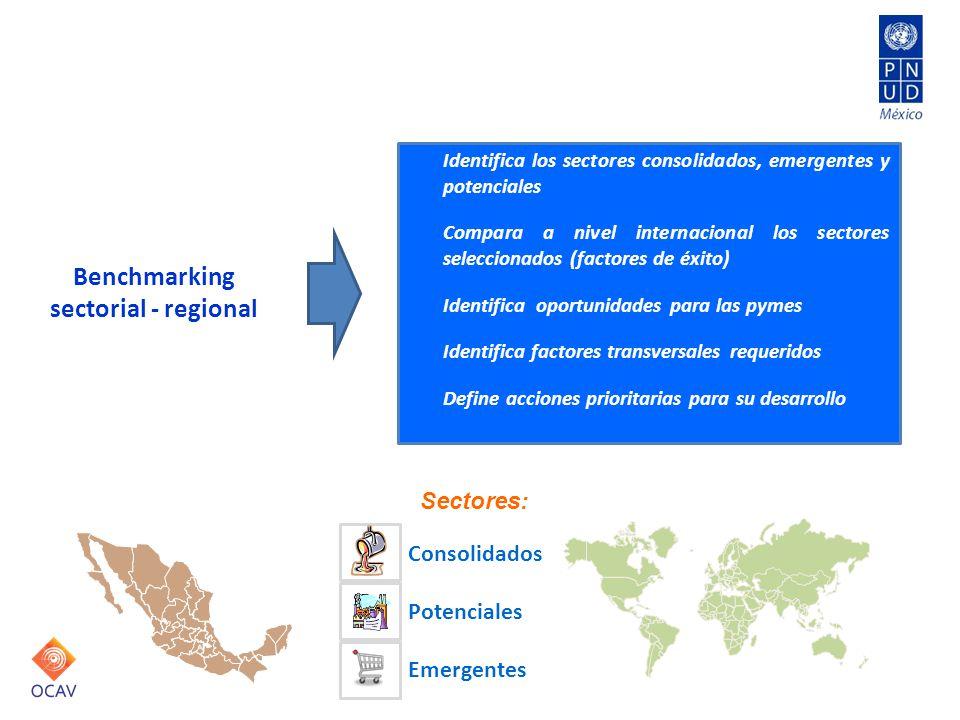 Identifica los sectores consolidados, emergentes y potenciales Compara a nivel internacional los sectores seleccionados (factores de éxito) Identifica oportunidades para las pymes Identifica factores transversales requeridos Define acciones prioritarias para su desarrollo Benchmarking sectorial - regional Consolidados Potenciales Emergentes Sectores: Planeación para el desarrollo regional y la innovación
