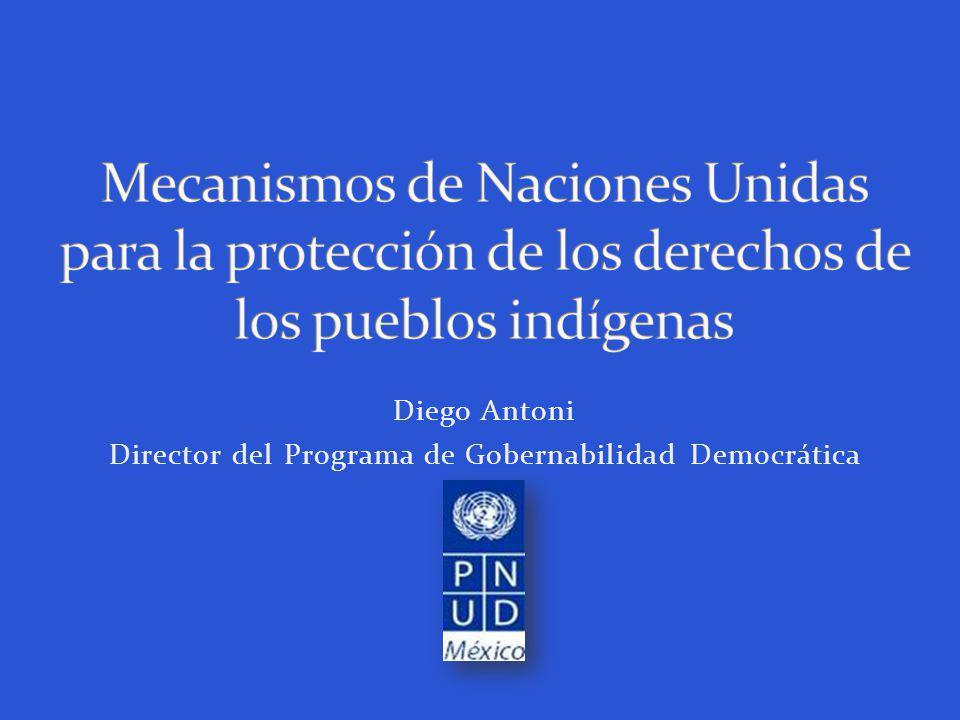 Diego Antoni Director del Programa de Gobernabilidad Democrática