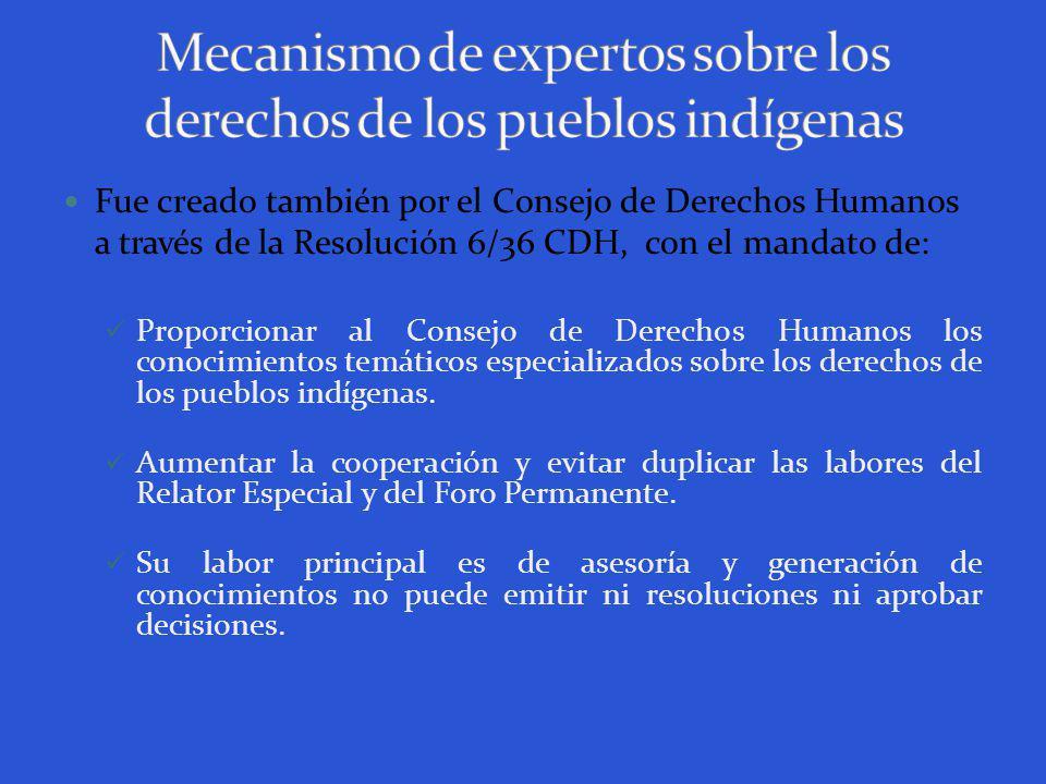 Fue creado también por el Consejo de Derechos Humanos a través de la Resolución 6/36 CDH, con el mandato de: Proporcionar al Consejo de Derechos Humanos los conocimientos temáticos especializados sobre los derechos de los pueblos indígenas.