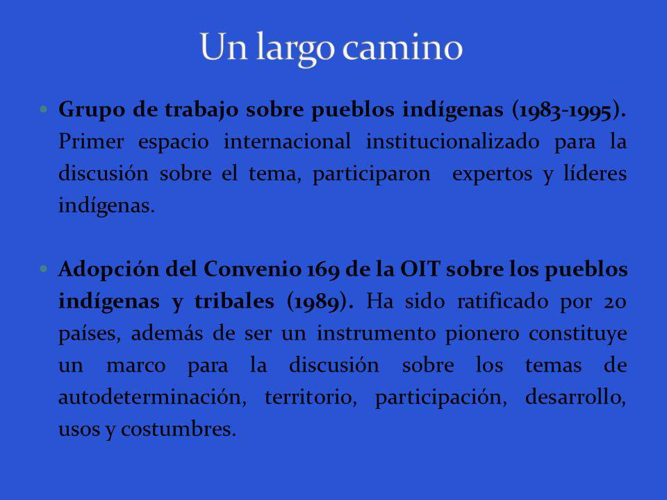 Primer Decenio Internacional de las poblaciones indígenas en el mundo ( 1994).
