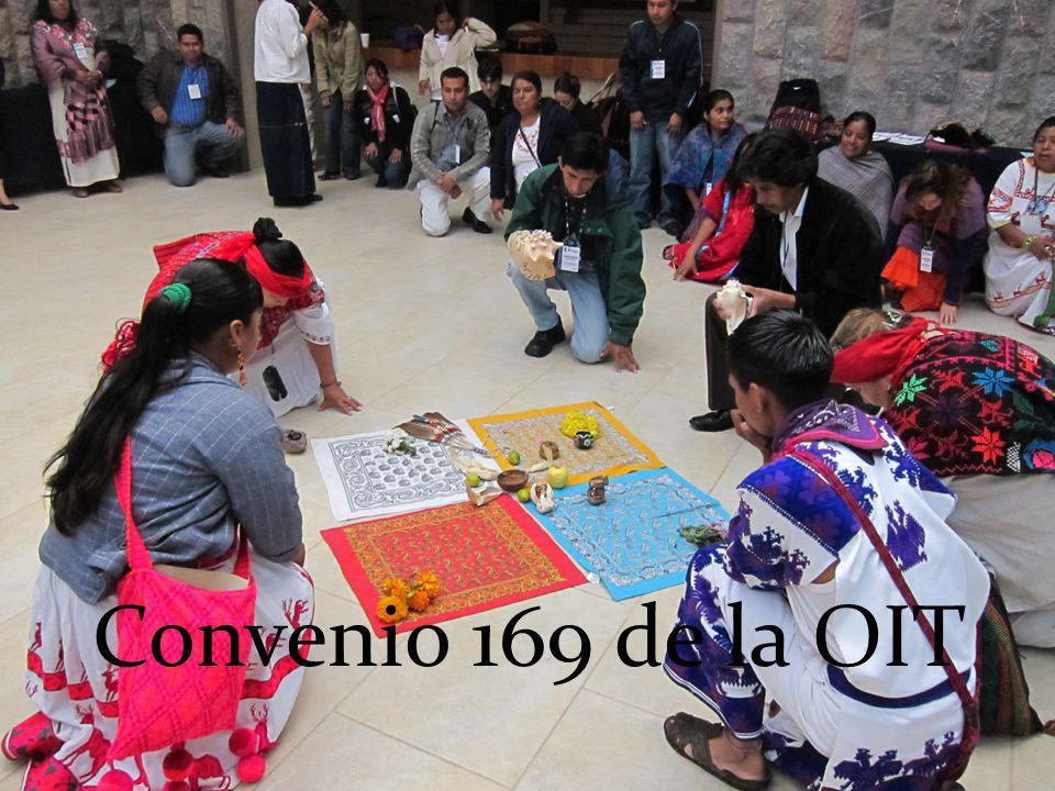 Convenio 169 de la OIT