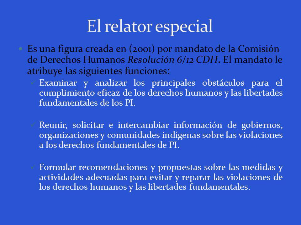 Es una figura creada en (2001) por mandato de la Comisión de Derechos Humanos Resolución 6/12 CDH.