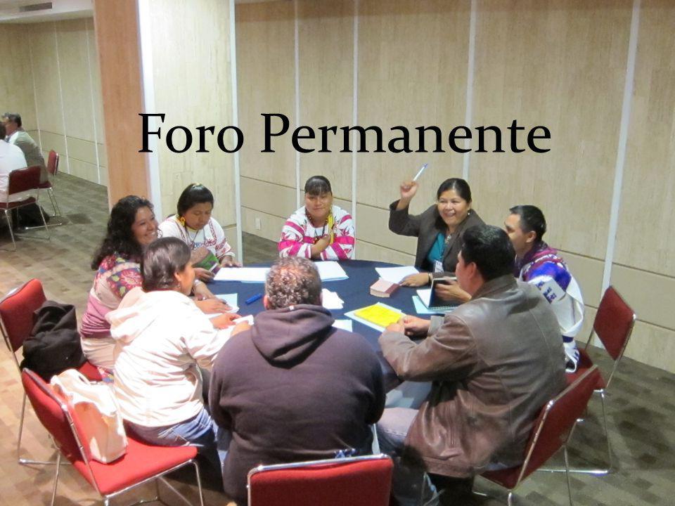 Foro Permanente