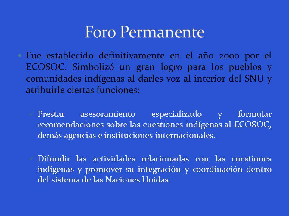 Fue establecido definitivamente en el año 2000 por el ECOSOC.
