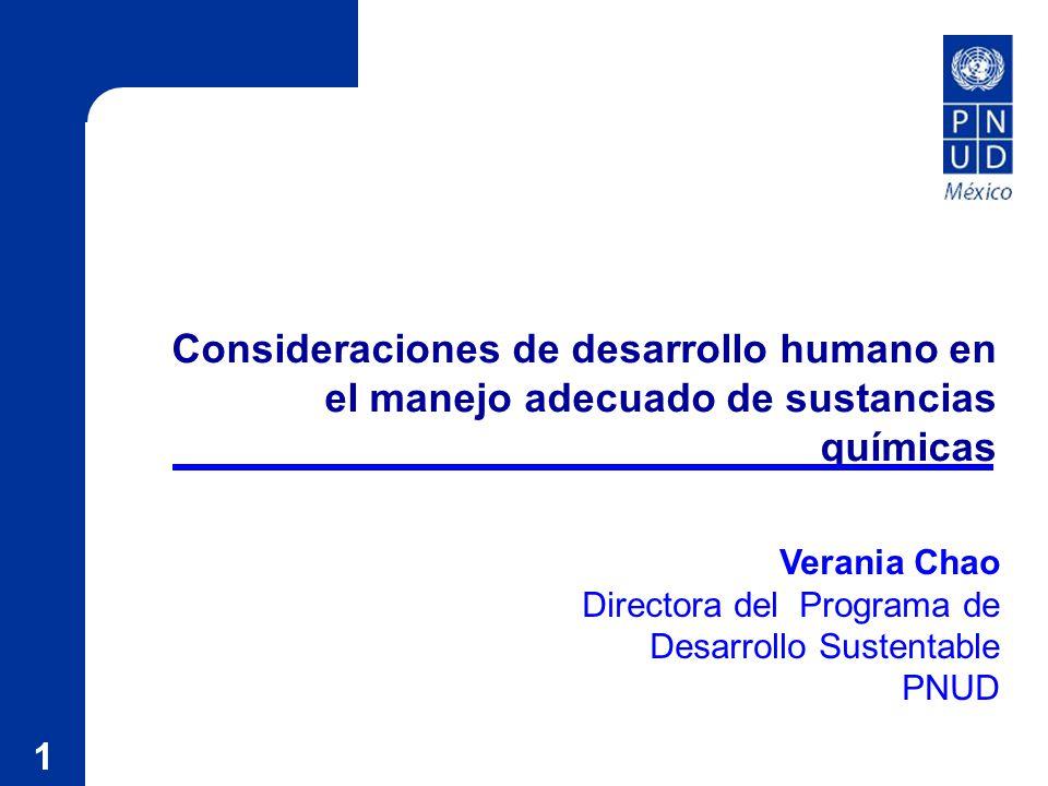 1 Consideraciones de desarrollo humano en el manejo adecuado de sustancias químicas Verania Chao Directora del Programa de Desarrollo Sustentable PNUD