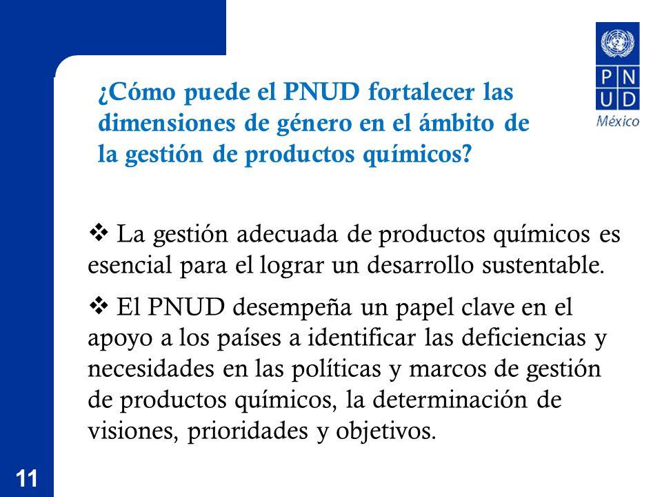 11 ¿Cómo puede el PNUD fortalecer las dimensiones de género en el ámbito de la gestión de productos químicos.