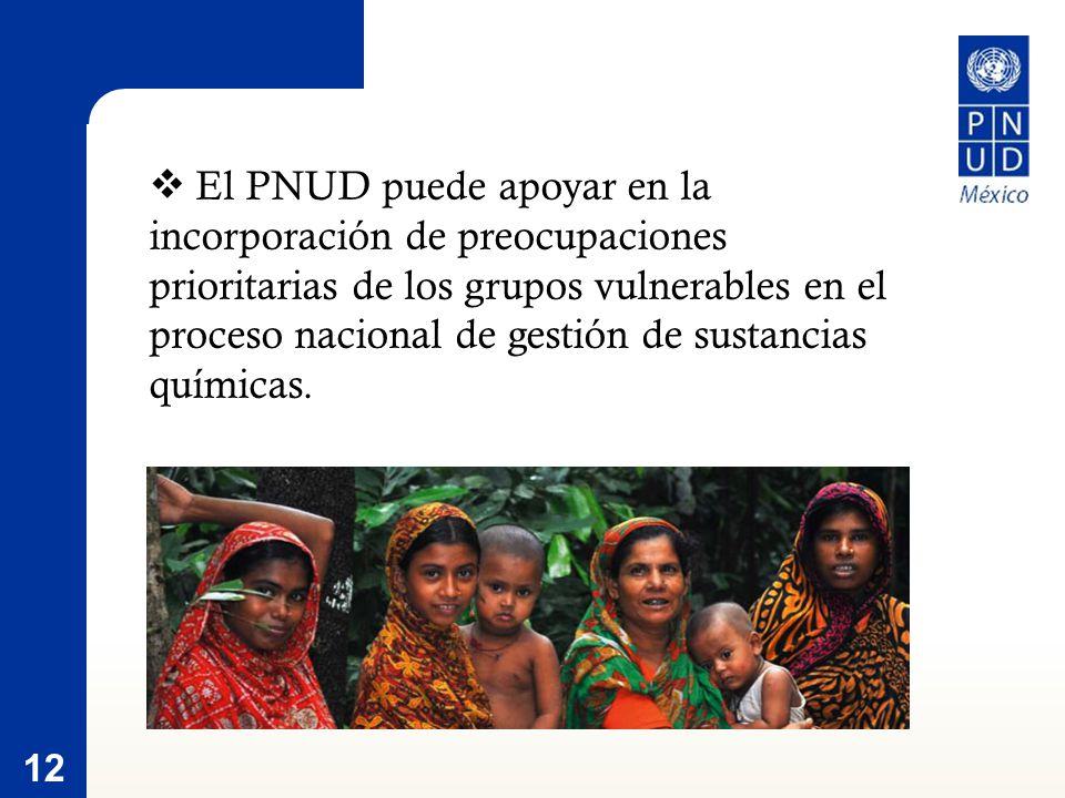 12 El PNUD puede apoyar en la incorporación de preocupaciones prioritarias de los grupos vulnerables en el proceso nacional de gestión de sustancias químicas.