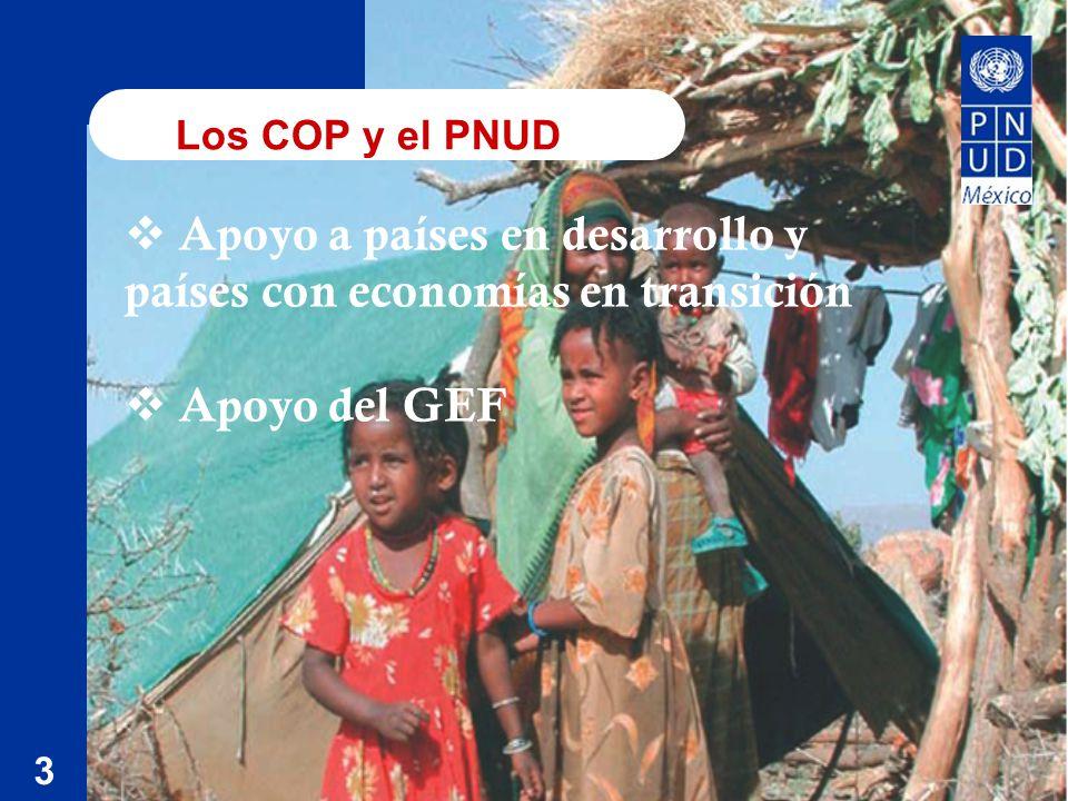 Los COP y el PNUD 3 Apoyo a países en desarrollo y países con economías en transición Apoyo del GEF