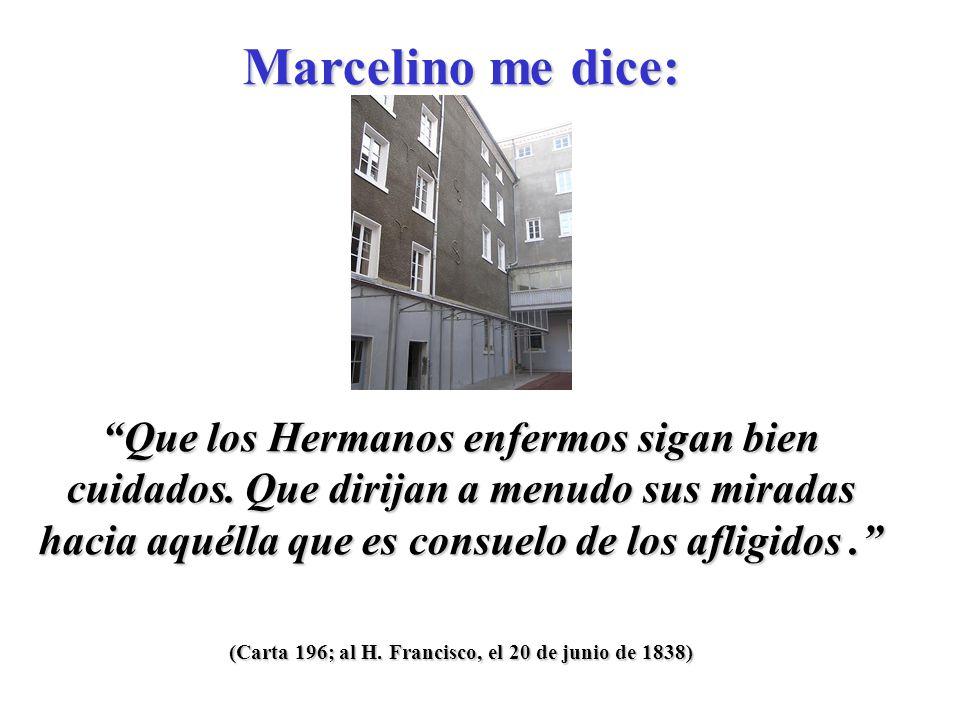 (Carta 196; al H.