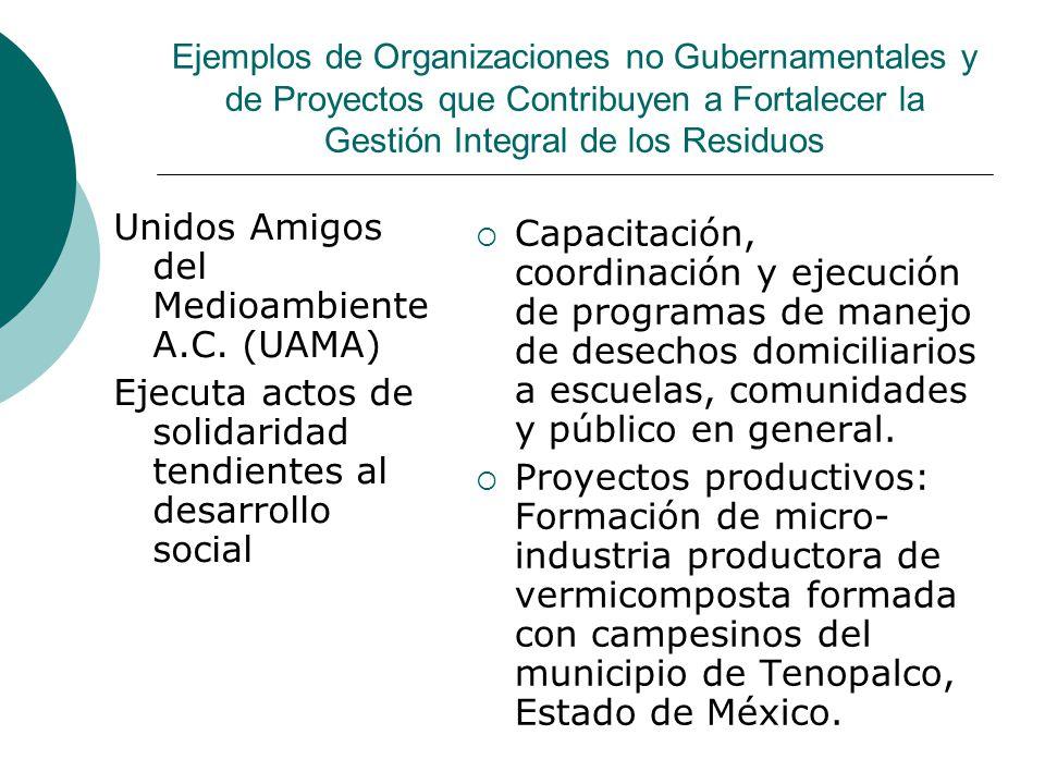 Ejemplos de Organizaciones no Gubernamentales y de Proyectos que Contribuyen a Fortalecer la Gestión Integral de los Residuos Unidos Amigos del Medioambiente A.C.