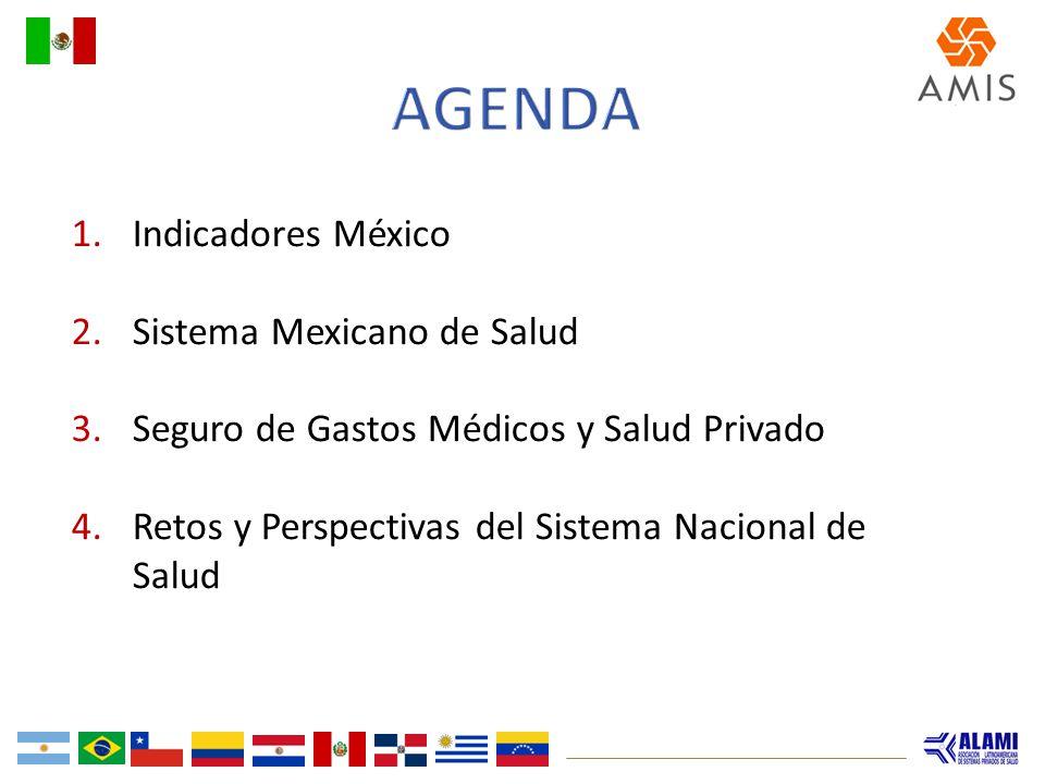 1.Indicadores México 2.Sistema Mexicano de Salud 3.Seguro de Gastos Médicos y Salud Privado 4.Retos y Perspectivas del Sistema Nacional de Salud