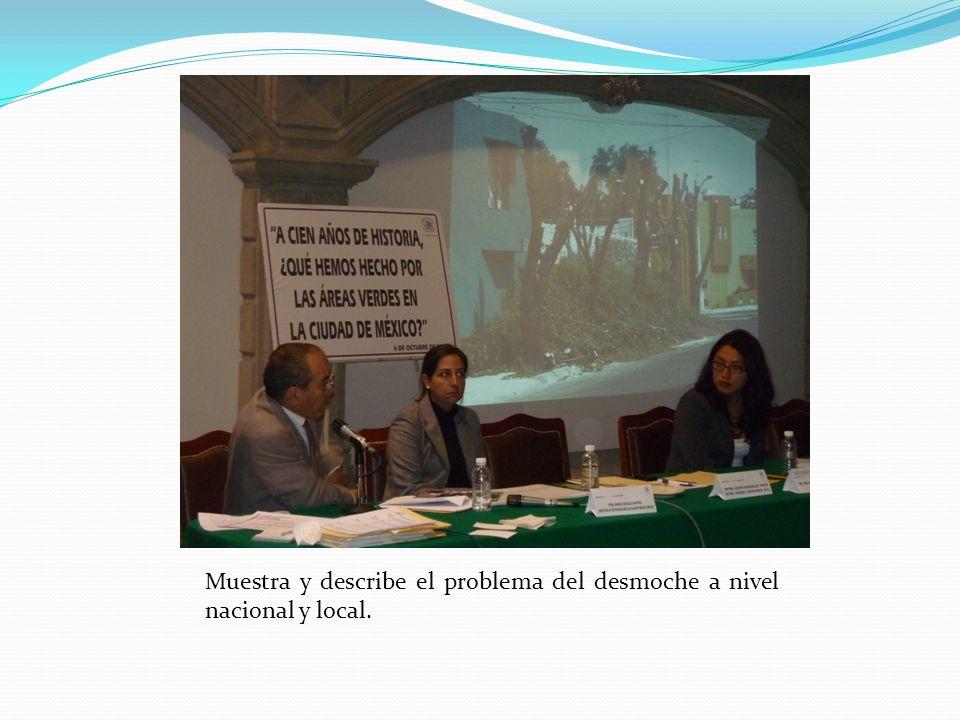 Muestra y describe el problema del desmoche a nivel nacional y local.