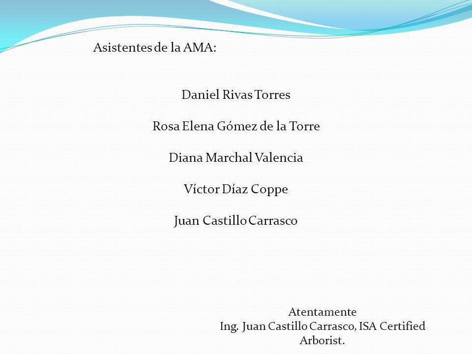 Asistentes de la AMA: Daniel Rivas Torres Rosa Elena Gómez de la Torre Diana Marchal Valencia Víctor Díaz Coppe Juan Castillo Carrasco Atentamente Ing