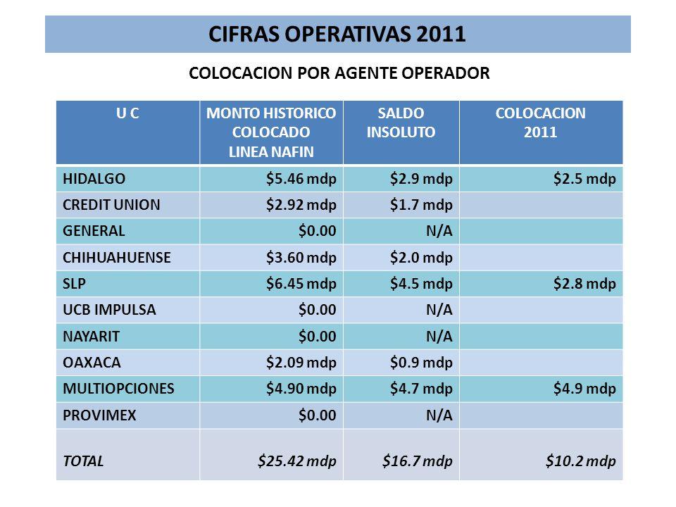 U CMONTO HISTORICO COLOCADO LINEA NAFIN SALDO INSOLUTO COLOCACION 2011 HIDALGO$5.46 mdp$2.9 mdp$2.5 mdp CREDIT UNION$2.92 mdp$1.7 mdp GENERAL$0.00N/A CHIHUAHUENSE$3.60 mdp$2.0 mdp SLP$6.45 mdp$4.5 mdp$2.8 mdp UCB IMPULSA$0.00N/A NAYARIT$0.00N/A OAXACA$2.09 mdp$0.9 mdp MULTIOPCIONES$4.90 mdp$4.7 mdp$4.9 mdp PROVIMEX$0.00N/A TOTAL$25.42 mdp$16.7 mdp$10.2 mdp COLOCACION POR AGENTE OPERADOR CIFRAS OPERATIVAS 2011
