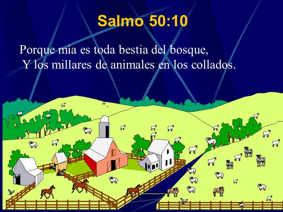 . Porque mía es toda bestia del bosque, Y los millares de animales en los collados. Salmo 50:10
