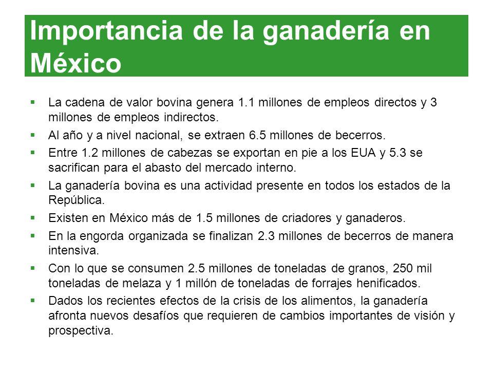 Importancia de la ganadería en México La cadena de valor bovina genera 1.1 millones de empleos directos y 3 millones de empleos indirectos. Al año y a