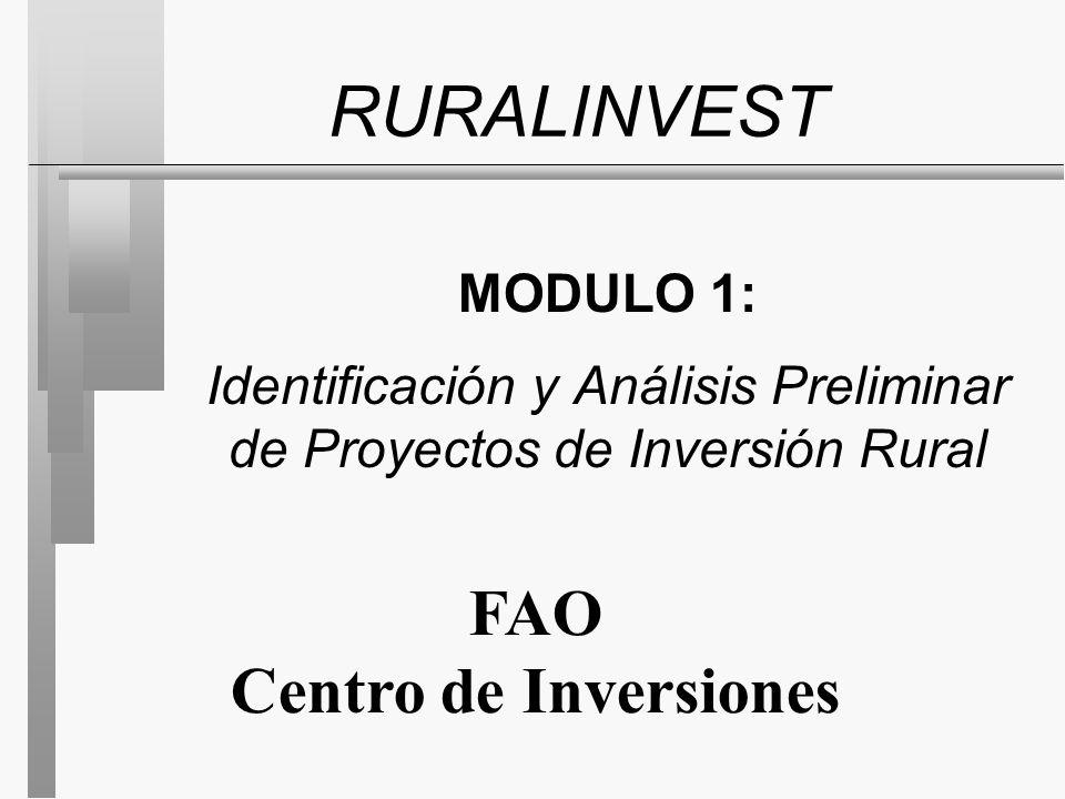 MODULO 1: Identificación y Análisis Preliminar de Proyectos de Inversión Rural RURALINVEST FAO Centro de Inversiones
