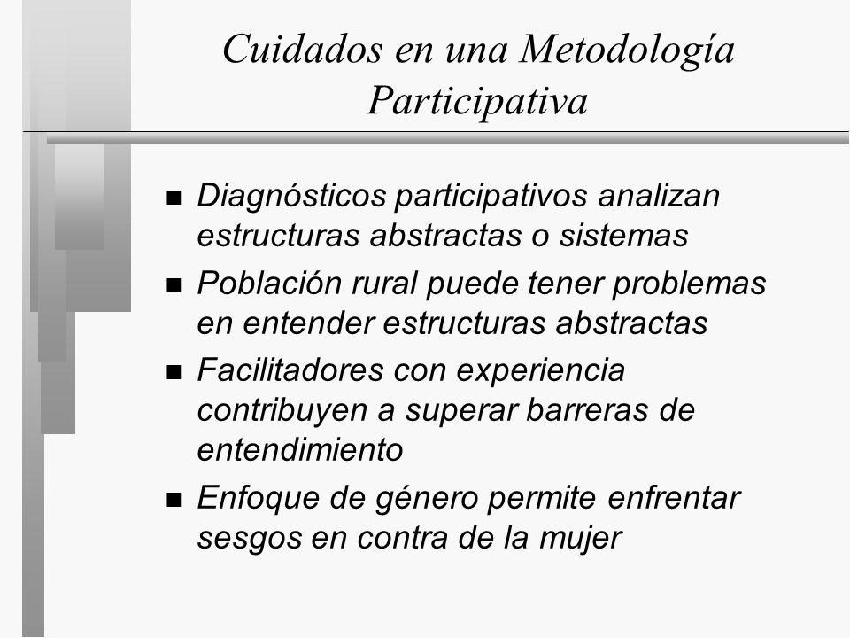 Cuidados en una Metodología Participativa n Diagnósticos participativos analizan estructuras abstractas o sistemas n Población rural puede tener problemas en entender estructuras abstractas n Facilitadores con experiencia contribuyen a superar barreras de entendimiento n Enfoque de género permite enfrentar sesgos en contra de la mujer