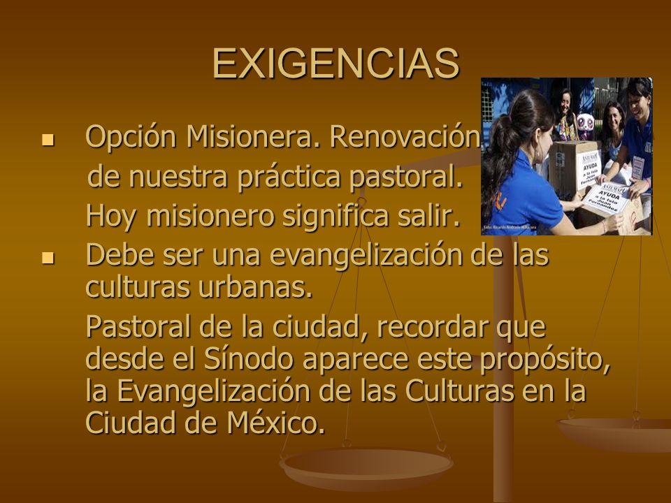 EXIGENCIAS Opción Misionera. Renovación Opción Misionera. Renovación de nuestra práctica pastoral. de nuestra práctica pastoral. Hoy misionero signifi