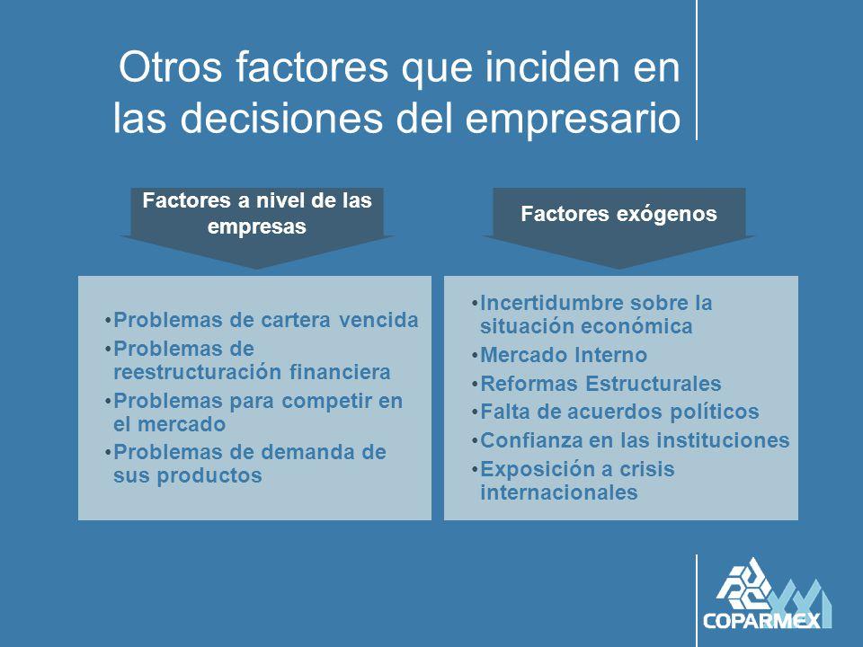 Otros factores que inciden en las decisiones del empresario Problemas de cartera vencida Problemas de reestructuración financiera Problemas para compe
